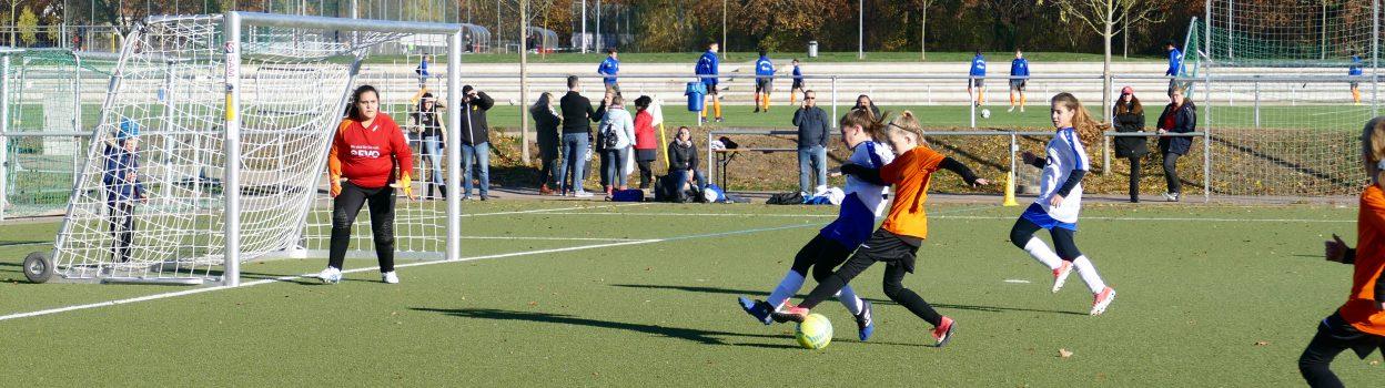 U13: Wiking vs. BSC (17.11.18)
