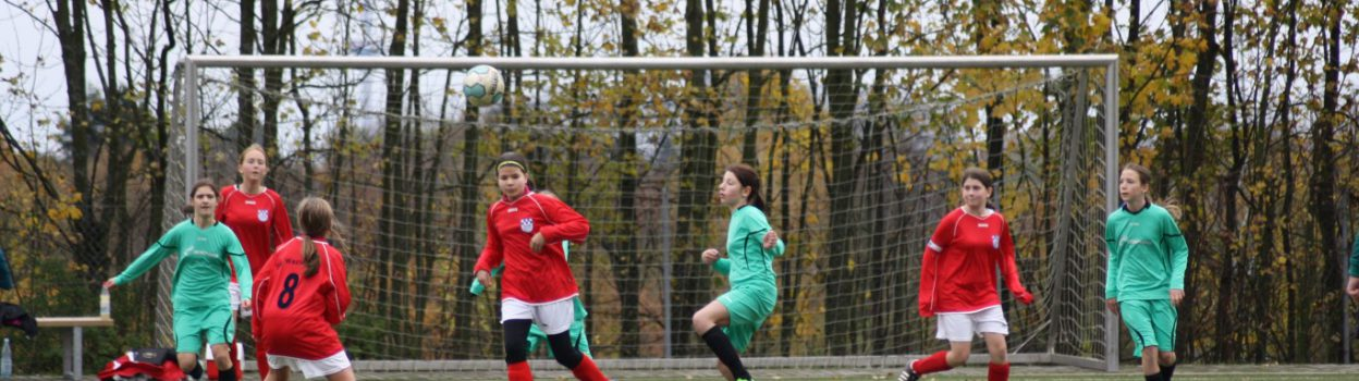 U12 gewinnt Heimspiel mit 2:1 gegen die SG Westerfeld!