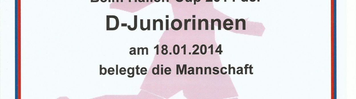U12 gewinnt das Turnier in Jügesheim!